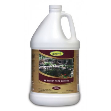 Concentrated Liquid Pond Bacteria - All Season Formula